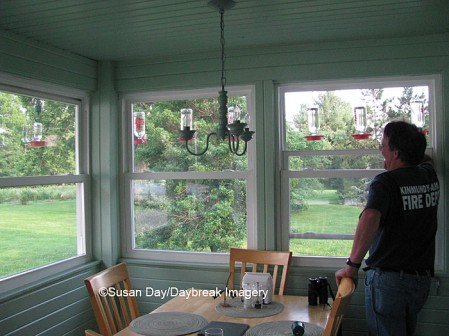 Richard on our back porch looking at hummingbird feeders
