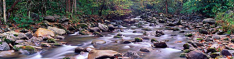 Little Pigeon River in fall in Greenbrier area - Great Smoky Mtn NP, TN