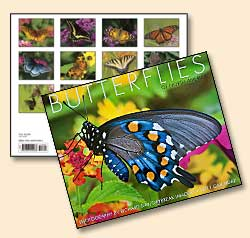 Butterflies of North America Calendar Cover