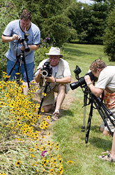 Butterfly Photographers at Daybreak Sanctuary